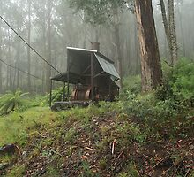 Logging relics high up in the mountains by mountainshack08