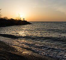 Greeting the Sun on Lake Ontario by Georgia Mizuleva