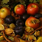 Autumn fruits 2 by smcneem