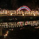 Rainbow Springs State Park Footbridge at Christmas by AuntDot