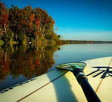 Fall Paddle by Douglas Hamilton