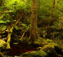 Red cascade, Hebe River by Nic Haygarth