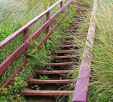 Steps to Bigbury Beach by lezvee
