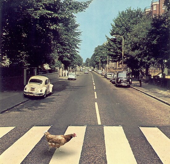 Why did the chicken cross THE road? by John Medbury (LAZY J Studios)