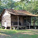 Country Folks Cabin by RickDavis