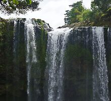 Whangarei Falls by lezvee