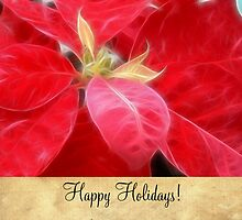 Mottled Red Poinsettia 2 Happy Holidays S2F1 by Christopher Johnson