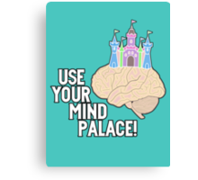 USE YOUR MIND PALACE Canvas Print