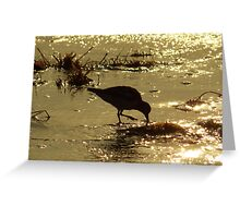 Sea of Gold Greeting Card