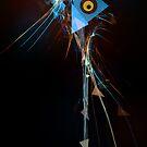 the sisyhpopa bird by DARREL NEAVES