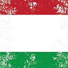 Flag of Italy by quark