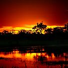 A Botswana sunset by jozi1