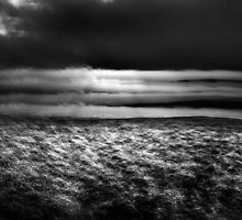 Light on the Moors. by maxblack
