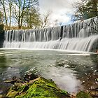 The Weir at Samlesbury Bottoms by Steve  Liptrot