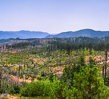 Yosemite Panorama shot by Jerome Obille