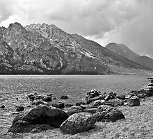 Jenny Lake Shoreline by Brenton Cooper
