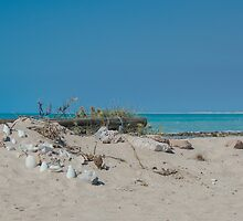 Cape Keraudren by Indediego