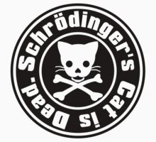 Schrödinger's Cat is Dead. by auraclover
