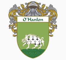 O'Hanlon Coat of Arms / O'Hanlon Family Crest by William Martin