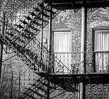Escape the Shadows by Dana Horne