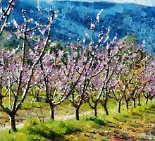 Orchard view by Fran Woods