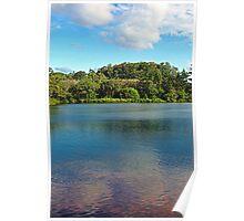 Waokele Pond and Koi Study 1  Poster