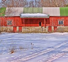 The Red n Green Shed by vigor