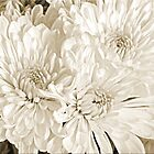 Mums The Word by Chet  King