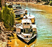 On The Banks of the Murray by wallarooimages