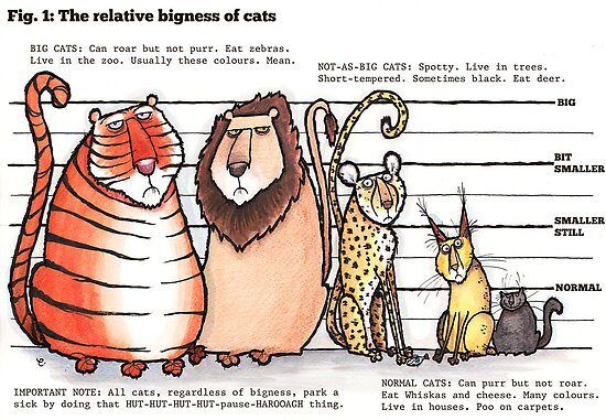 Cat bigness by dotmund
