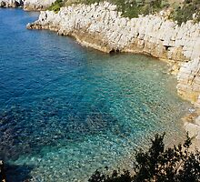Cote D'Azur - the Azure Coast - at Saint-Jean-Cap-Ferrat, France by Georgia Mizuleva