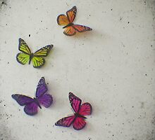 Oh to be a Butterfly by Cassia