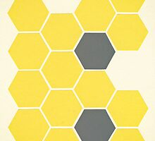Yellow Honeycomb by Cassia