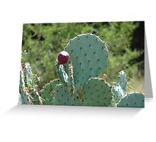 """""""Catcus"""" by Carter L. Shepard Greeting Card"""