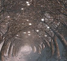 Winter Way by XanMade