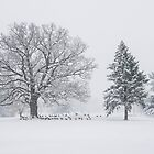 January Snow Storm - Geese Take Shelter by Mike Koenig
