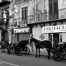 Horse Carriages in Palermo, Italy. 2014 by Igor Pozdnyakov