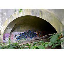 Graffiti under a bridge - Photographic Print