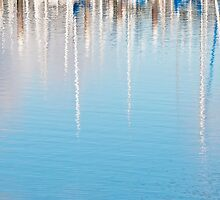 Reflections on the Sound by Lynnette Peizer
