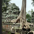 Ta Prohm Temple, Cambodia by Geoffrey Higges