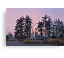 dog park at dusk Canvas Print