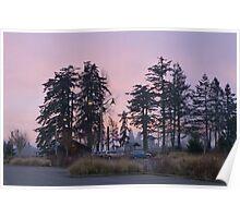 dog park at dusk Poster