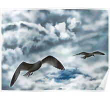 Freedom of Flight Poster