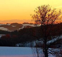 Colorful winter wonderland sundown V | landscape photography by Patrick Jobst