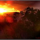 Sun Set in Canberra/ACT/Australia by Wolf Sverak