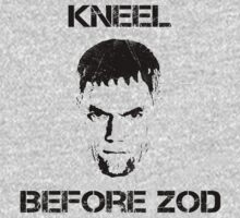 Kneel before Zod! by NotNowJordan