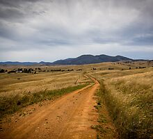 High Country Lane by WendyJC