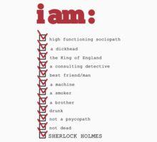 I AM: sherlock holmes by valeriabald
