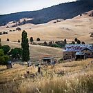 Rustic Charm by WendyJC