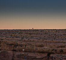 Alone at Dusk by mattpaskinphoto